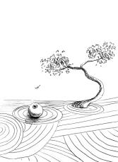 Zen attitude - 2014