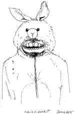 Weird rabbit