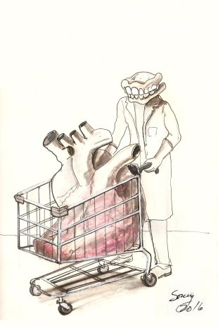 grocery-time-2016
