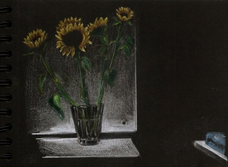 sunflowers-pencils on black paper-2017