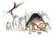 insecte-oiseau